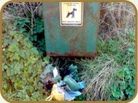 Dog Poop Disposal