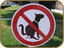 No dog poop!